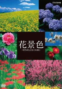 花景色~四季を彩る 日本の名風景~